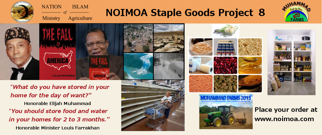 noimoa_staple_goods8